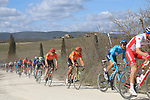 The peloton including Olympic Champion Greg Van Avermaet (BEL) CCC Team on sector 2 Bagnaia during Strade Bianche 2019 running 184km from Siena to Siena, held over the white gravel roads of Tuscany, Italy. 9th March 2019.<br /> Picture: Seamus Yore | Cyclefile<br /> <br /> <br /> All photos usage must carry mandatory copyright credit (© Cyclefile | Seamus Yore)