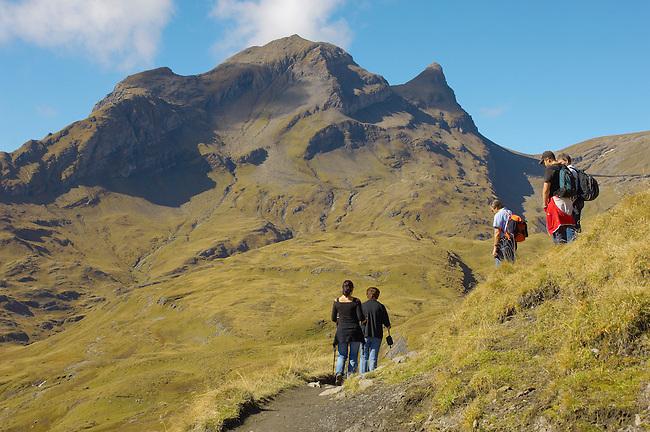 Grindelwald First- Walkers - Bernese Alps - Switzerland