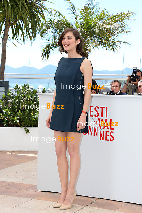 CPE/Actress Marion Cotillard attends the photocall for 'Blood Ties' at The 66th Annual Cannes Film Festival on May 20, 2013 in Cannes, France.