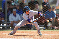 New York University Violets right fielder Coltrane Tait (42) lays down a bunt during a game against the Edgewood Eagles on March 14, 2017 at Terry Park in Fort Myers, Florida.  NYU defeated Edgewood 12-7.  (Mike Janes/Four Seam Images)