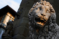 Detail of sculpture of Lion, 1600, by Flaminio Vacca or Vacchi (1538-1605), Florence, Italy, pictured on 9 June 2007 lit by the late afternoon sun. The lion was made to match a Roman sculpture which originally stood by the staircase at the Villa Medici. When the Villa was sold by the Grand Duke of Tuscany the lions were moved to the Piazza della Signoria, Florence, where they flank the steps to the Loggia dei Lanzi. The other lion is visible in the background. Picture by Manuel Cohen