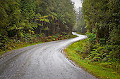 Winding gravel road through the West Coast forest to Gillespies Beach from Fox Glacier, Westland District, West Coast, South Island, New Zealand.