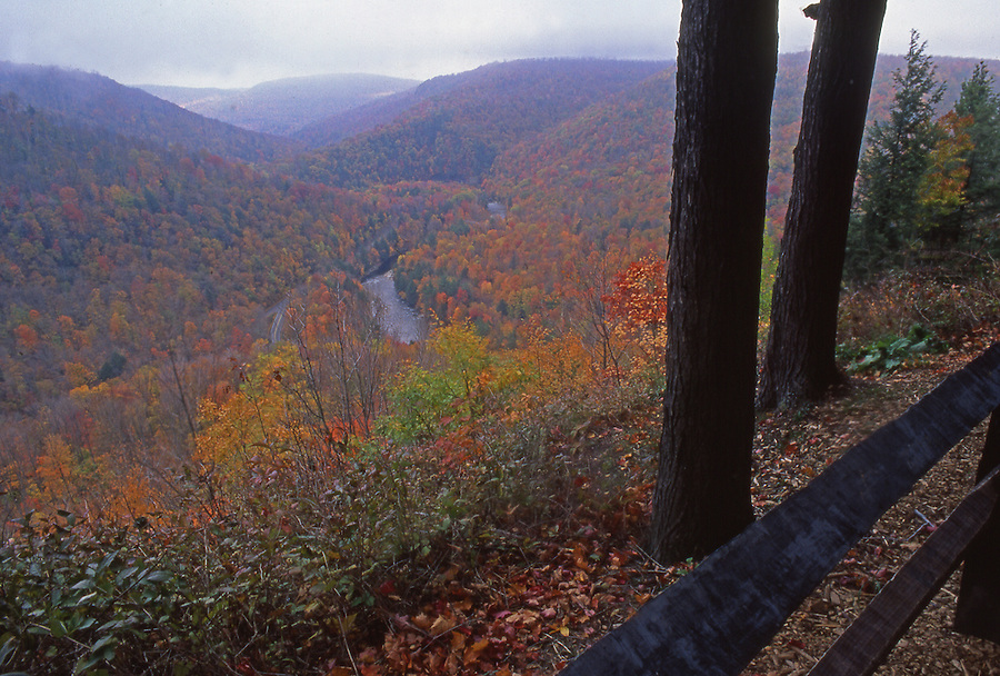 World's End State Park, PA. autumn, Loyalsock Creek