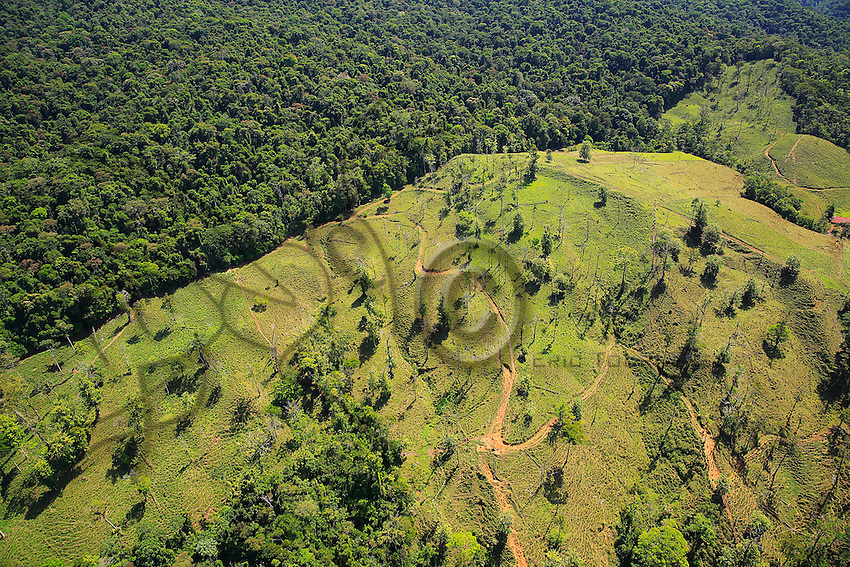 Aerial view of deforestation near San Vito Costa Rica. Outside national parks, primary and secondary forests are often cleared to make way for oil palm or pineapple plantations./// Vue aérienne de la déforestation près de San Vito au Costa-Rica. En dehors des parcs nationaux, les forêts primaires et secondaires sont souvent rasées pour faire place à des plantations de palmiers à huile ou d'ananas.
