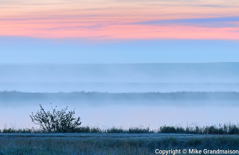 DAwn light and fog over the prairie landscape<br /> Trochu<br /> Alberta<br /> Canada
