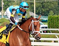 07-27-17 Saratoga Race Course Scenes July 27, 2017