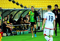 Wellington's Andrija Kaluderovic challenges an assistant referee during the A-League football match between Wellington Phoenix and Adelaide United at Westpac Stadium in Wellington, New Zealand on Saturday, 27 January 2018. Photo: Dave Lintott / lintottphoto.co.nz