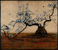 Bonsai tree with white blossoms photo transfer over antique map of China and encaustic painting.