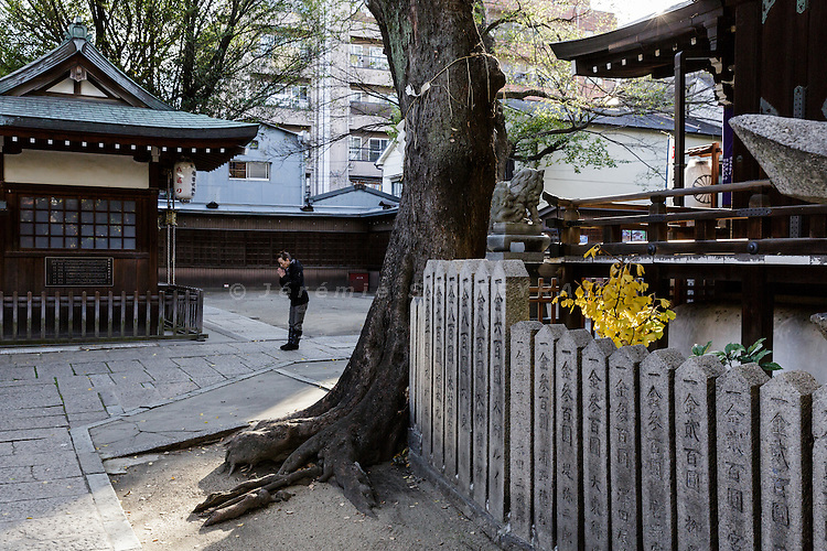 Osaka, Japan, November 25 2016 - A turtle holding a stone at Miyukimoriten shinto shrine in Osaka&rsquo;s Korea town in Tsuruhashi, the home of the largest Korean community (Zainichi) in Japan, is the symbol of a long-term exchange between Japan and Korean peninsula.<br /> The majority of Koreans in Japan are Zainichi Koreans, often known simply as Zainichi , who are the permanent ethnic Korean residents of Japan. The term &quot;Zainichi Korean&quot; refers only to long-term Korean residents of Japan who trace their roots to Korea under Japanese rule, distinguishing them from the later wave of Korean migrants who came mostly in the 1980s. The estimated population is about 500,000 people. As of 2016, about 90% of them have South Korean nationality and 10% of them are considered by Japanese administration as &laquo;&nbsp;Korean&nbsp;&raquo; (chosenjin), the word used for korean people before the division between North and South Korea in 1948. The ratio used to be the opposite in the 1950ies.