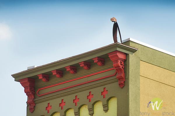 Metal bird sculpture on rooftop.  Williamsport, PA.