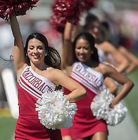 HAWGS ILLUSTRATED JASON IVESTER<br /> 09-12-15 Arkansas vs Toledo football
