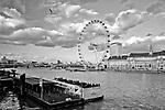 Londyn. 2009-03-09. London Eye, nazywane również Millenium Wheel (koło obserwacyjne), Londyn, Anglia
