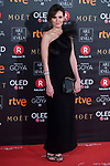 Elena Ballesteros attends red carpet of Goya Cinema Awards 2018 at Madrid Marriott Auditorium in Madrid , Spain. February 03, 2018. (ALTERPHOTOS/Borja B.Hojas)