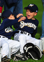 T-BALL BREWERS 2010