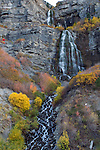 1010-39 310.CR2<br /> <br /> GCS Bridal Veil Falls, autumn colors<br /> <br /> <br /> October 21, 2010<br /> <br /> Photography by Mark A. Philbrick<br /> <br /> Copyright BYU Photo 2010<br /> All Rights Reserved<br /> photo@byu.edu  (801)422-7322