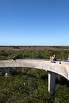 Tourists walk to the Shark Valley Observation Tower, Shark Valley area, Everglades National Park, Florida, USA
