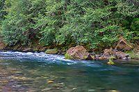 ORCAN_D218 - USA, Oregon, Mount Hood National Forest,  Lush spring forest borders the Clackamas River - a federally designated Wild and Scenic River.