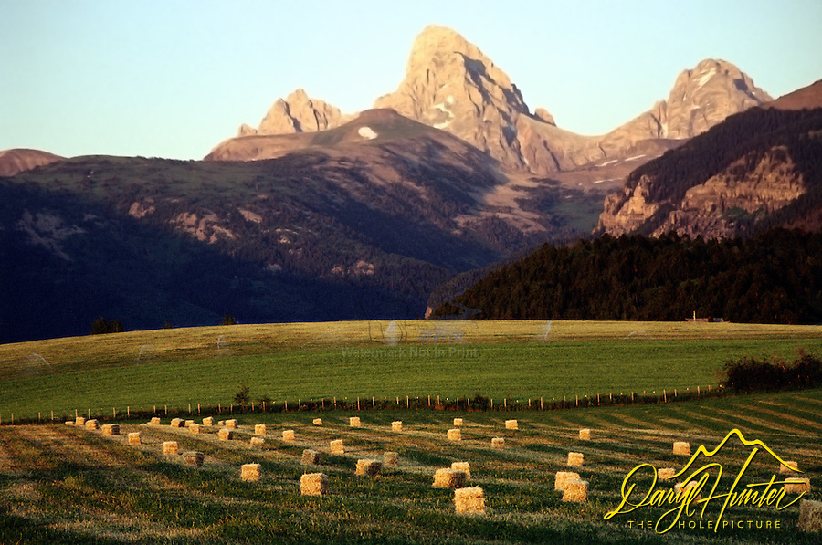 Baled Hay, Grand Tetons, Teton Valley, Alta, Wyoming