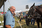 John Hutchinson gives a presentation on his percheron horses at the Pawpaw Festival on Sept. 17, 2016. Hutchinson and his horses gave carriage rides to attendees of the festival throughout the weekend.