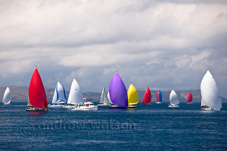Yacht racing in the Whitsunday Passage during Hamilton Island Race Week.  Whitsundays, Queensland, Australia