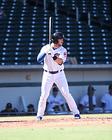 Ian Rice - Mesa Solar Sox - 2017 Arizona Fall League (Bill Mitchell)