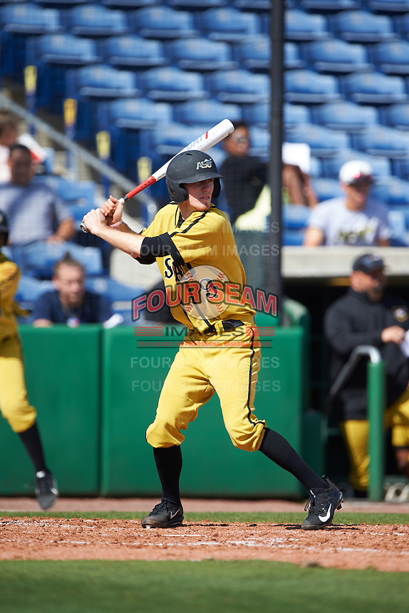 Alabama State Hornets Chris Biocic (19) at bat during a game against the Maryland Terrapins on February 19, 2017 at Spectrum Field in Clearwater, Florida.  Maryland defeated Alabama State 9-7.  (Mike Janes/Four Seam Images)
