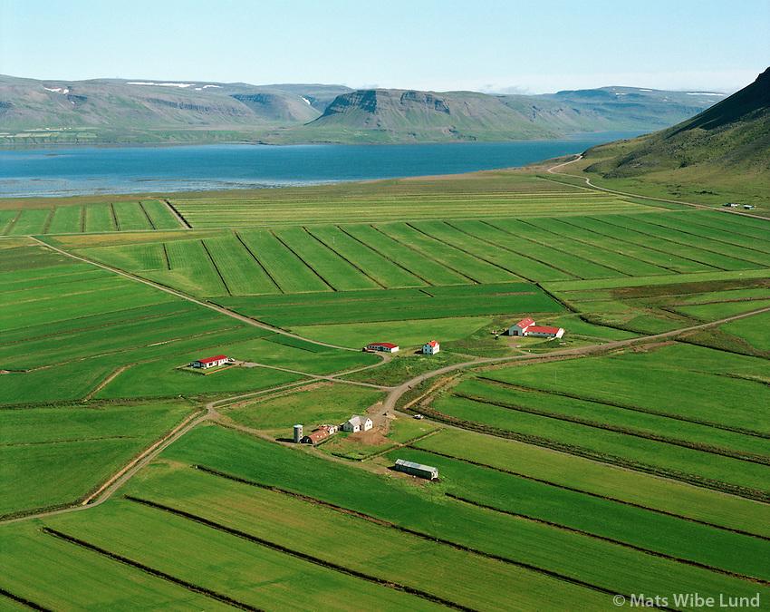 Stóra-Holt og Litla-Holt séð til norðausturs, Saurbæjarhreppur / Stora-Holt and Litla-Holt viewing northeast, Saurbaejarhreppur.