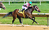 Mademoiselle Coco winning at Delaware Park on 6/28/16