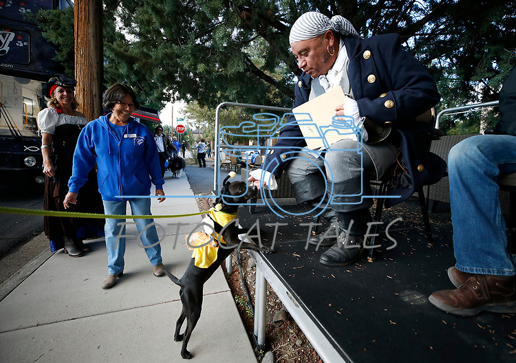 Stitch, 1, plays to the judges during the Scallywaggers Pirate Pup Parade at the Brewery Arts Center, in Carson City, Nev., on Wednesday, Sept. 18, 2019.<br />Photo by Cathleen Allison/Nevada Momentum
