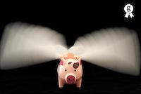 Flying Pig toy with wings (blurred motion) (Licence this image exclusively with Getty: http://www.gettyimages.com/detail/110048310 )