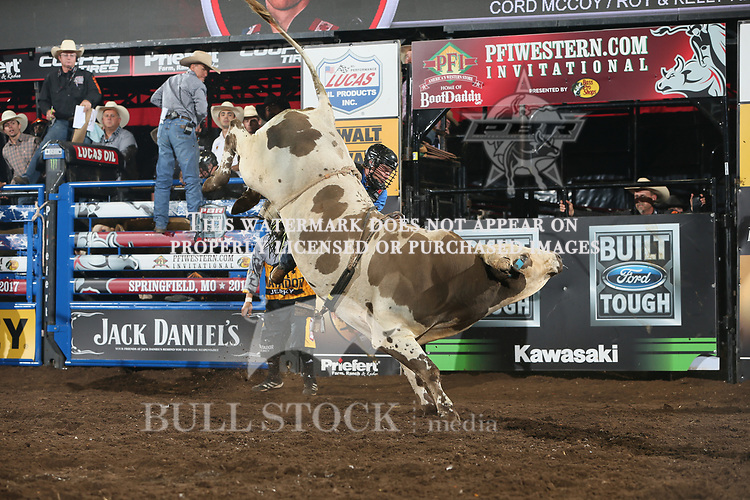 Dakota Buttar attempts to ride Cord McCoy/Roy & Kelly Renfroe's Mr. Majestic during the third round of the Springfield Built Ford Tough series PBR. Photo by Andy Watson
