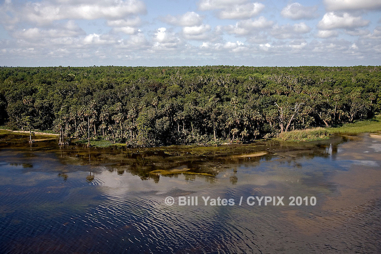 Lake George, Florida - Northwestern bank due west of the tip of Drayton Island - helicopter aerial