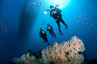 Divers on the Lerico Wreck<br />