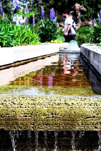 Waterfall Planter at Botanic Gardens