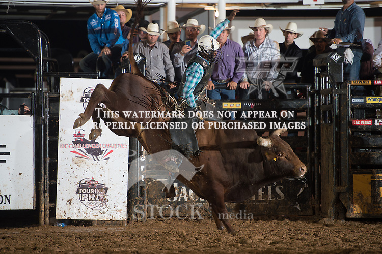 Ezekiel Mitchell attempts Pill Pusher of D&H Cattle co/ Bob & Jeri Adams during the JW Hart Challenge event in Decatur, TX - 6.3.2016. Photo by Christopher Thompson