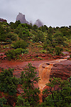 Monsoon Waterfall, near Sedona, Arizona.  Available in sizes up to 30 x 45 inches.