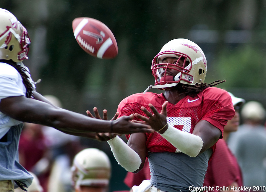 TALLAHASSEE, FL 8/27/10 -FSU-082710  CH-Florida State's Christian Jones makes a catch under pressure during practice Friday in Tallahassee. .COLIN HACKLEY PHOTO