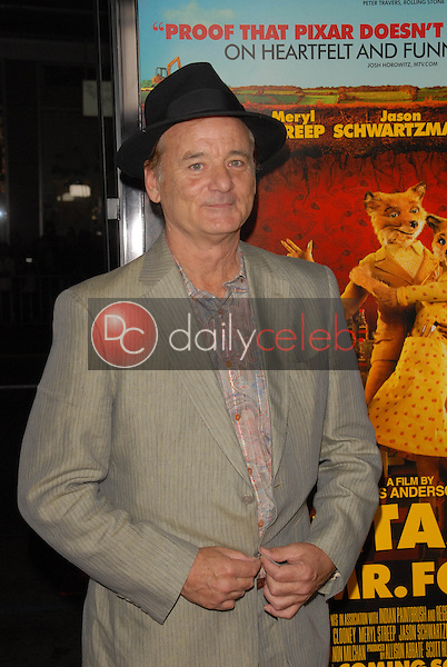Bill Murray<br />at the Los Angeles Screening of 'Fantastic Mr. Fox' for the opening night of AFI Fest 2009. Grauman's Chinese Theatre, Hollywood, CA. 10-30-09<br />Dave Edwards/DailyCeleb.com 818-249-4998