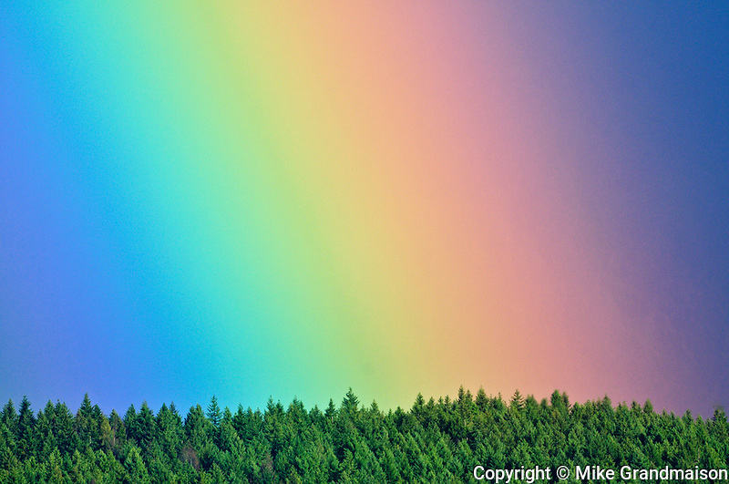Rainbow detail over forest<br /> Port Alberni<br /> British Columbia<br /> Canada<br /> Port Alberni<br /> British Columbia<br /> Canada