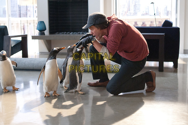 Jim Carrey.in Mr. Popper's Penguins .*Filmstill - Editorial Use Only*.CAP/PLF.Supplied by Capital Pictures.