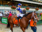 """OCTOBER 6, 2018 : Successful Zip in post parade of the """"Win & You're In"""" Champagne Stakes on Champagne Stakes Day at Belmont Park on October 6, 2018 in Elmont, NY.  Sue Kawczynski/ESW/CSM"""
