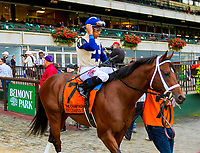 "OCTOBER 6, 2018 : Successful Zip in post parade of the ""Win & You're In"" Champagne Stakes on Champagne Stakes Day at Belmont Park on October 6, 2018 in Elmont, NY.  Sue Kawczynski/ESW/CSM"