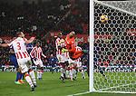 210117 Stoke City v Manchester Utd