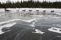 Cracks show in the ice as Jessica Hendricks team runs on Farewell Lake during Iditarod 2008