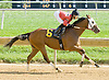 Shamroge winning at Delaware Park on 10/10/12