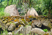 Replicas of ancient grass thatched huts in the rainforest of Waimea Valley Audubon Center, a botanical garden visitor attraction.