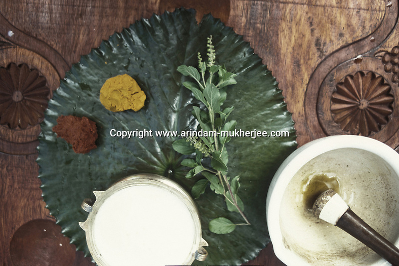 Ayurvedic plants and herbs used for ayurvedic treatment, Alleppey, Kerala, India.