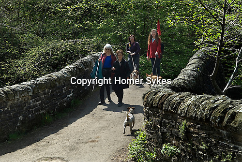 Made In Spring. Red Shoes walkers and their dogs on the Taff Trail.  May 2014