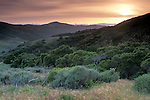 Sunset over the hills of Santa Cruz Island, Channel Islands, California