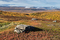 Autumn mountain landscape viewed from Kungsleden trail near Hemavan, Lapland, Sweden